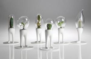 domsai-vasi-terrari-creativi-piante-matteo-cubic-06