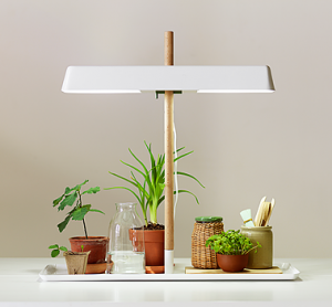 plant_lamp_02_reference-300x278