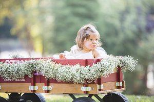 southern-wedding-flower-girl-wagon