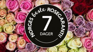 rosegaranti-640x360