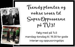 superoppusserne-banner