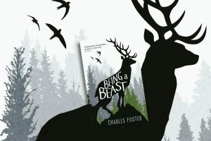 beast-1024x681