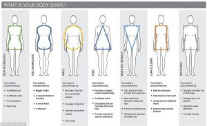 body-shape-diagram